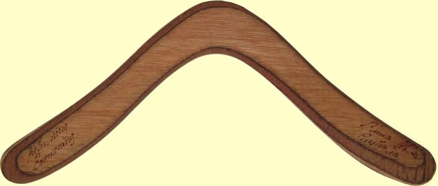 sports boomerang